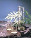 【送料無料】父の日のプレゼントに!BAMBOO 『酒器三点揃 』 廣田ガラス 日本製