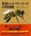 世界のミツバチ・ハナバチ百科図鑑/バーゲンブック{ノア・ウィルソン=リッチ 河出書房新社 理学 工学 生物 動物 生命科学 図鑑 写真 …