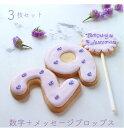アイシングクッキー 3枚セット 誕生日 オーダー 数字 ケーキトッパー メッセージ