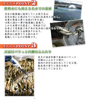 かんたん鮎めしの素【2合炊き用】年間100万匹鮎出荷炊き込みご飯