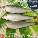 冷凍鮎 1kg 栃木県 喜連川 湧水育ち 鮎 小分け 魚 焼き魚 焼魚 川魚 バーベキュー
