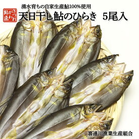鮎のひらき 5尾入 鮎の天日干し 鮎 干物 ひもの
