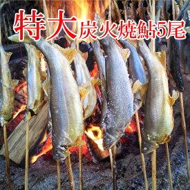 鮎の塩焼き 鮎の炭火焼 喜連川 湧水育ち 鮎 5尾入り 特大サイズ あゆ アユ バーベキュー
