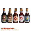 2019秋限定 常陸野ネストビール5本セット