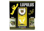 ルプルス大瓶2種専用グラス入りギフトボックス