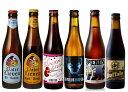 お家飲み・ベルギービールセット 詰め合わせ 6本入り 送料無料  クラフトビール ビール
