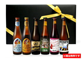 ベルギービールセット 詰め合わせ 6本入り 送料無料  クラフトビール ビール