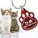 迷子札 軽量 送料無料 【 迷子札 猫 】 猫の日 猫用 名入れ 名前入り プレゼント 名入り ギフト ペット 猫用品 首輪 …