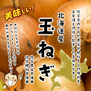 北海道産 玉ねぎ(たまねぎ) 化学農薬不使用・化学肥料不使用 約500g♪(M〜2Lサイズ)
