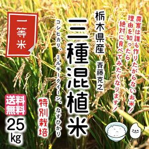 《1等米》三種混植米(コシヒカリ、ミルキークイーン、ナスヒカリ)特別栽培 25kg 【令和2年産】【栃木県産】斉藤克之 ご注文を受けてから精米いたします!《精白米、7分づき、5分づき、