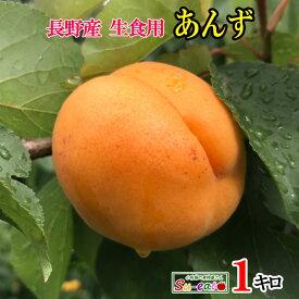 ご予約受付中 長野県産 生食用 あんず 品種おまかせ 約1キロ