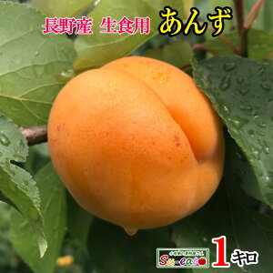 7月中旬発送  生食用 あんず 品種おまかせ 長野県産 1キロ