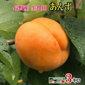ご予約受付中 長野県産 生食用 あんず 品種おまかせ 約3キロ