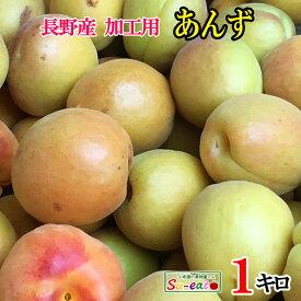 ご予約受付中 加工用 あんず アプリコット 減農薬 長野県産 約1キロ