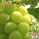 訳あり 完熟 ぶどう シャインマスカット 長野県産 2キロ