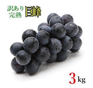 9月下旬発送 訳あり 巨峰 種なし ぶどう 長野県産 3kg レビューを書いたら200円クーポン