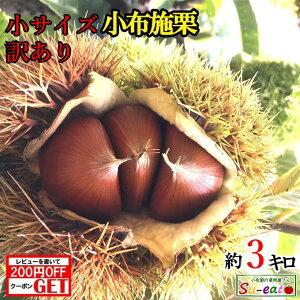 10月上旬〜中旬 小サイズ 小布施栗 訳あり 生栗 3キロ レビューを書いたら200円クーポン