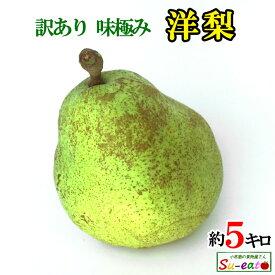 ご予約受付中 訳あり 味極み 洋梨 長野県産 約5キロ
