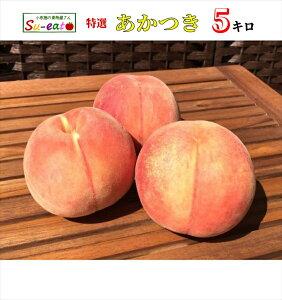 8月上旬発送 特選 あかつき 桃 減農薬 長野県産 5キロ レビューを書いたら200円クーポン