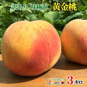 8月中旬発送  黄金桃 減農薬 長野県産 3キロ レビューを書いたら200円クーポン
