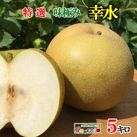 9月上旬発送 特選 梨 幸水 減農薬 長野県産 5キロ