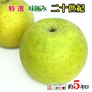 9月下旬発送 特選 二十世紀 梨 減農薬 長野県産 5キロ