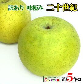 9月中旬発送 訳あり 青梨 減農薬 長野県産 5キロ レビューを書いたら200円クーポン