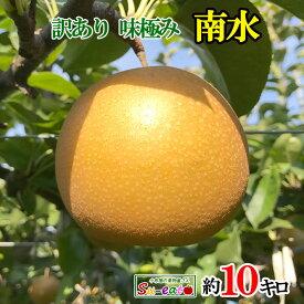 訳あり 南水 梨 10キロ 減農薬 完熟 長野県産