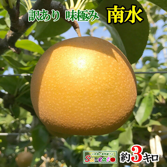 【ご予約受付中】 訳あり 完熟 梨 南水 秋月 減農薬 長野県産 小布施 産地直送 鮮度抜群 獲れたて 3キロ