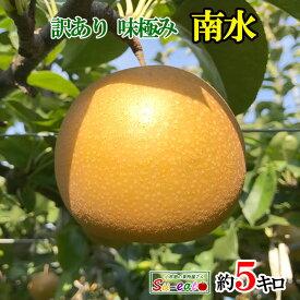 9月下旬発送 南水 訳あり 梨 減農薬 長野県産 5キロ