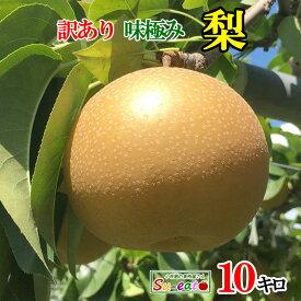 南水 梨 訳あり 減農薬 長野県産 10キロ レビューを書いたら200円クーポン