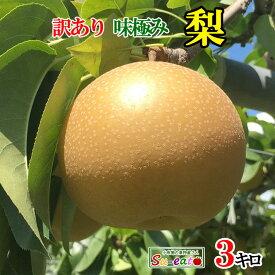 南水 梨 訳あり減農薬 長野県産 3キロ レビューを書いたら200円クーポン