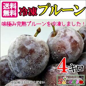 冷凍 生プルーン 減農薬 長野県産 4キロ