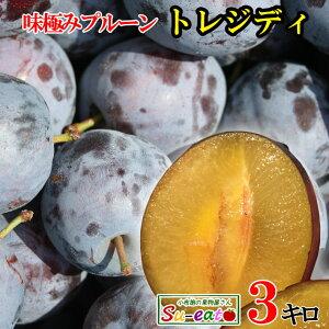 冷凍 生プルーン トレジディ 長野県産  3キロ ※解凍NG