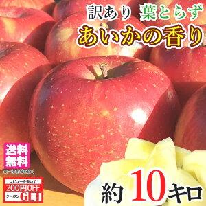 11月下旬発送 訳あり あいかの香り りんご 減農薬 10キロ レビューを書いたら200円クーポン