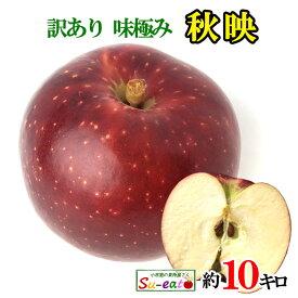 訳あり 葉とらず 味極み りんご 秋映 10キロ 減農薬 長野県産
