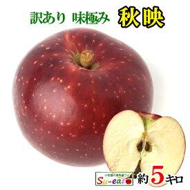 あす楽 秋映 訳あり 葉とらず 味極み りんご 減農薬 長野県産 5キロ