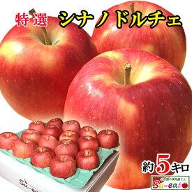 あす楽 特選 シナノドルチェ 葉とらず りんご 減農薬 長野県産 5キロ
