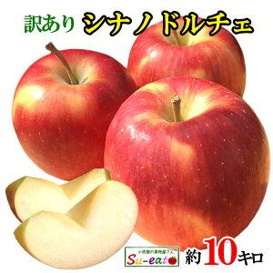 8月下旬〜9月上旬発送 シナノドルチェ つがる 訳あり りんご 減農薬 長野県産 10キロ レビューを書いたら200円クーポン