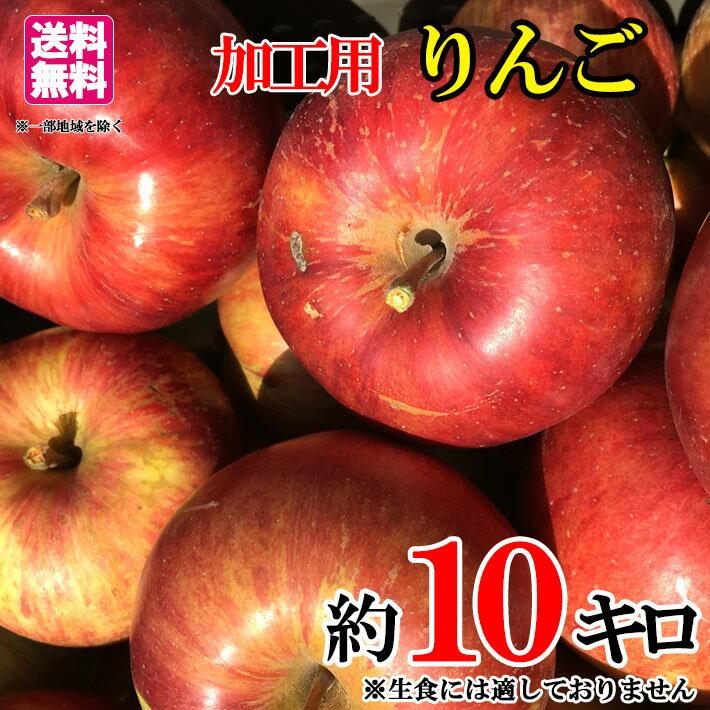 送料無料 加工用 葉とらず りんご 減農薬 長野県産 約10キロ 生食には向きません
