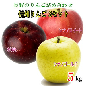 10月下旬発送 信州りんご3セット 訳あり  減農薬 5キロ レビューを書いたら200円クーポン