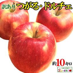 【8月上旬発送開始予定】送料無料長野産訳あり葉とらず味極みりんご減農薬産地直送10キロ