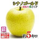 10月下旬 シナノゴールド りんご 訳あり 減農薬 長野県産 5キロ レビューを書いたら200円クーポン