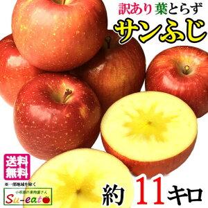 11月中旬〜下旬 サンふじ 訳あり りんご 減農薬 長野県産 11キロ レビューを書いたら200円クーポン