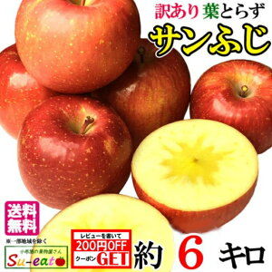 本日限定10%OFF サンふじ 訳あり りんご 減農薬 長野県産 約6キロ レビューを書いたら200円クーポン