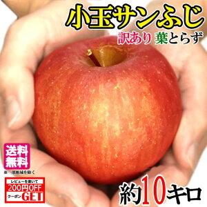 11月下旬発送 訳あり 小玉サンふじ りんご 減農薬 長野県産 10キロ レビューを書いたら200円クーポン
