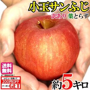 スーパーセール限定10%OFF 小玉 サンふじ 訳あり 5キロ りんご 減農薬 長野県産 レビューを書いたら200円クーポン