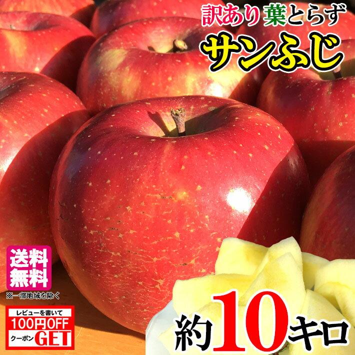 送料無料 家庭用 サンふじ りんご 減農薬 長野産 約10キロ