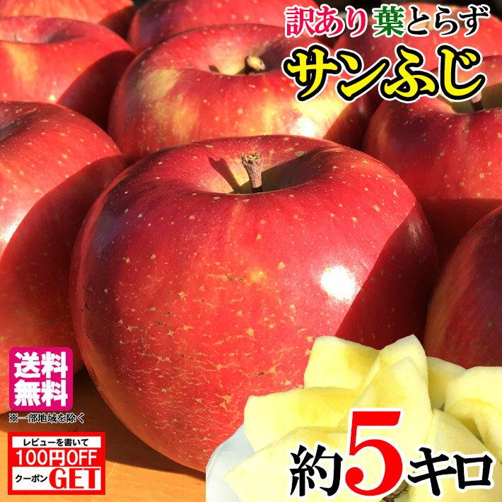 送料無料 長野産 サンふじ りんご 家庭用 減農薬 約5キロ