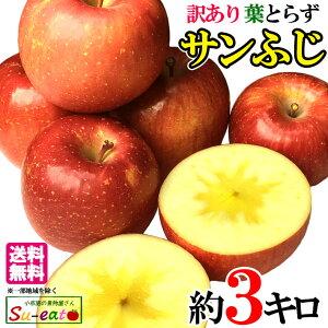 11月中旬発送 サンふじ 訳あり りんご 減農薬 長野県産 3キロ レビューを書いたら200円クーポン